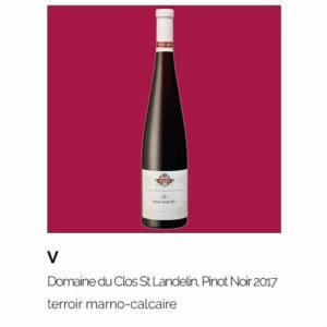 V, Domaine du Clos Saint Landelin, Pinot Noir 2017
